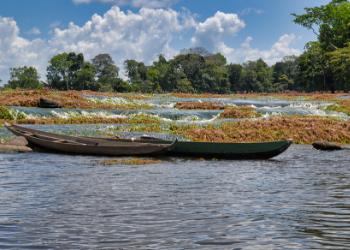 10 dagen cultuur & natuur snuiven in Suriname