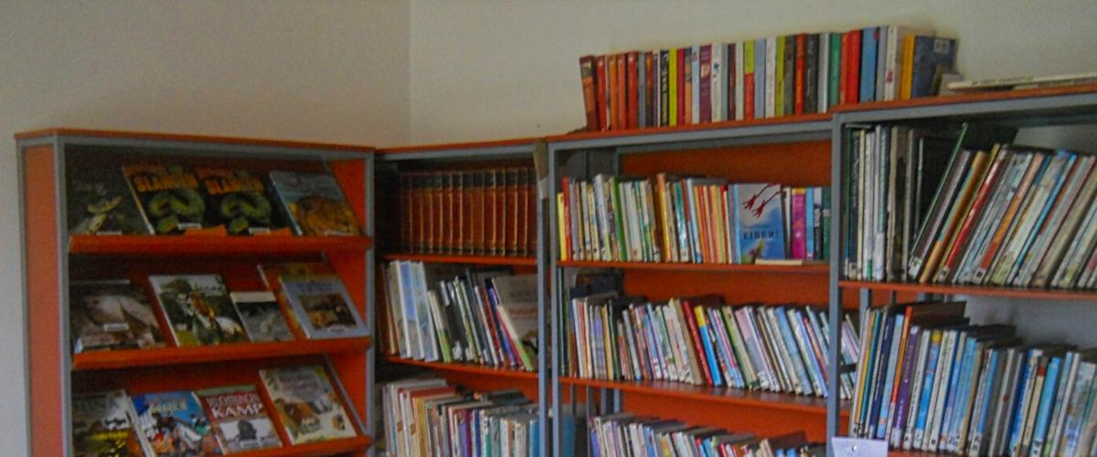 www.3 guyanas.nl-hoe het begon- stichting SONOS-inrichting bibliotheek-Semoisi